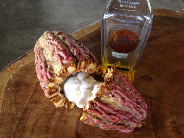 Cacao Fruit Liquor